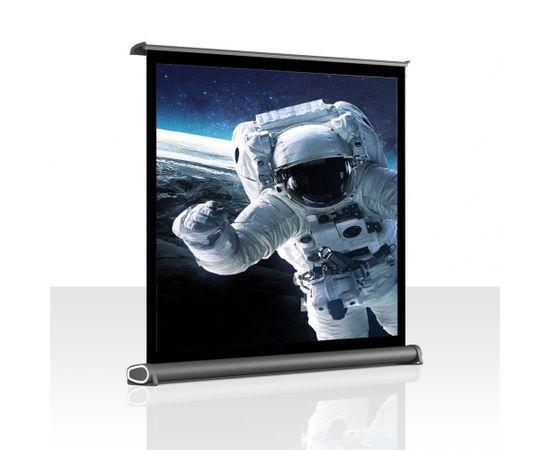 ART portable display 4:3 40'' 81x60cm PT-40 4:3