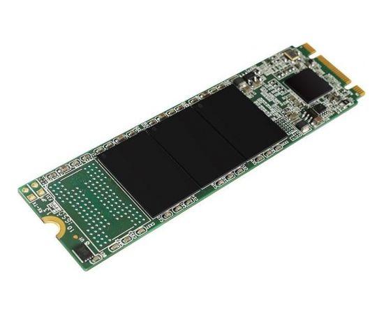 Silicon Power SSD A55 1TB, M.2 SATA, 560/530 MB/s