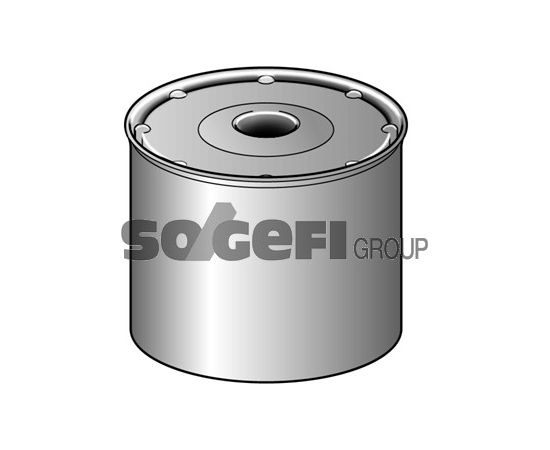 Fram Degvielas filtrs C1191PL