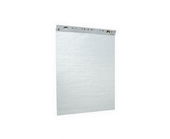 Papīra bloks ESSELTE, 59 x 84 cm, 50 lapas, balts/rūtiņu